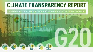 The Climate Transparency Report 2020