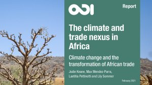 The climate and trade nexus in Africa