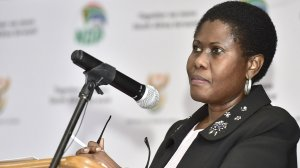 Zondo commission – Study groups hinder parliament oversight, says former minister