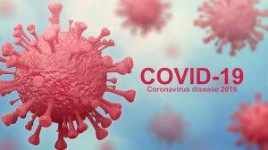 SA Confrmed Covid-19 Cases