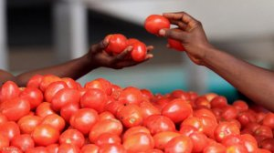 South Africa leads food security in sub-Saharan Africa