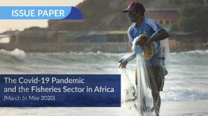 The covid-19 pandemic and the fisheries sector in Africa