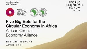 Five Big Bets for the Circular Economy in Africa: African Circular Economy Alliance