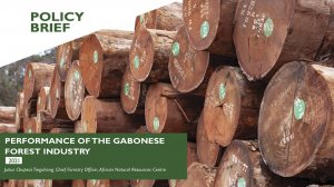 Performance of the Gabonese forest industry