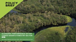 Economic performance of the Congo Basin's forestry sector