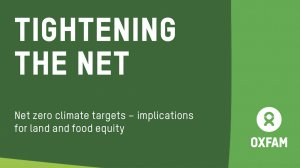 Tightening the net: the implications of net zero climate targets for land and food equity
