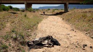 Picture of the drought conditions in South Africa