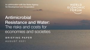 The costs and risks of AMR water pollution