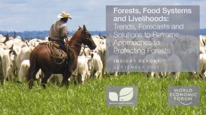 Forests, Food Systems, and Livelihoods: Trends, Forecasts, and Solutions to Reframe Approaches to Protecting Forests