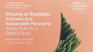 Shaping an Equitable, Inclusive and Sustainable Recovery: Acting Now for a Better Future