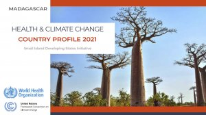 Health and climate change: country profile 2021: Madagascar