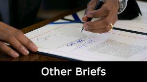 Other Briefs