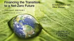 Financing the Transition to a Net-Zero Future