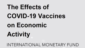 The Effects of COVID-19 Vaccines on Economic Activity